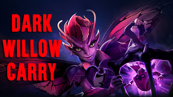 guide dark willow carry